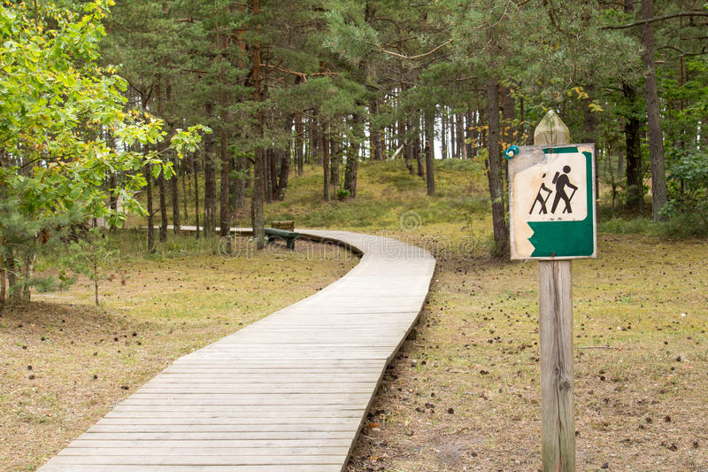 Wooden path in the forest. Wooden foot path in the pine forest stock images
