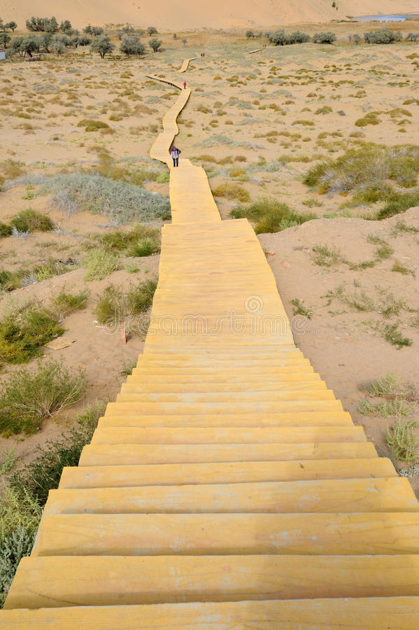 Free Wooden Path In Desert Stock Images - 28105364
