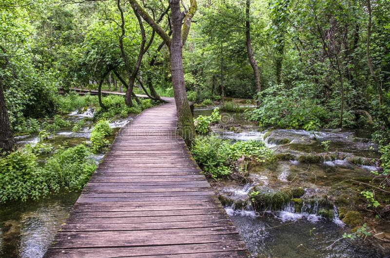 Wooden path over mountain river in Krka Natinal Park, Croatia. Wooden path over mountain river in Krka Natinal Park,Croatian national park, Croatia royalty free stock image
