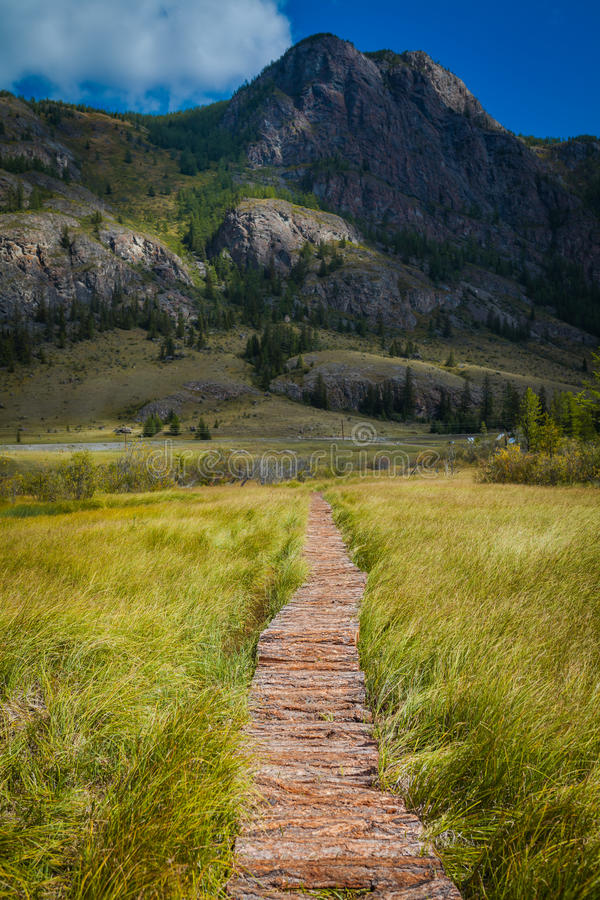 Wooden path through the peat bog. royalty free stock photos