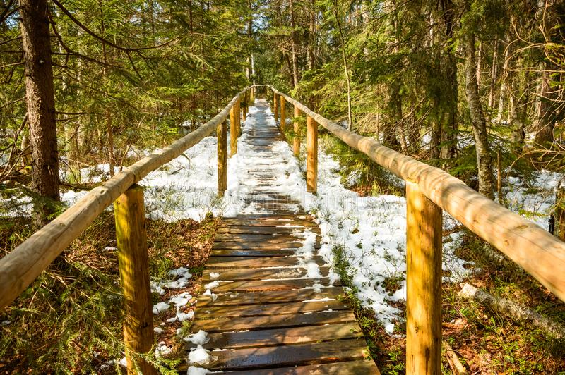 A wooden path on a peat bog covered with snow stock images