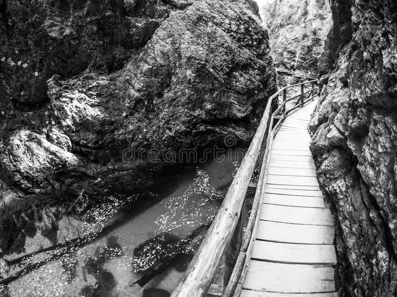 Wooden path in Vintgar gorge stock photo