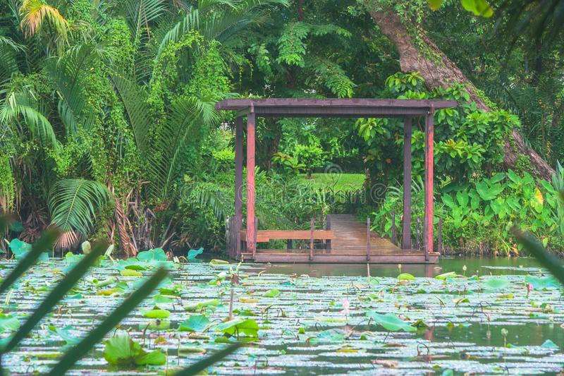 Wooden pavilion locate nearly the lake. stock images