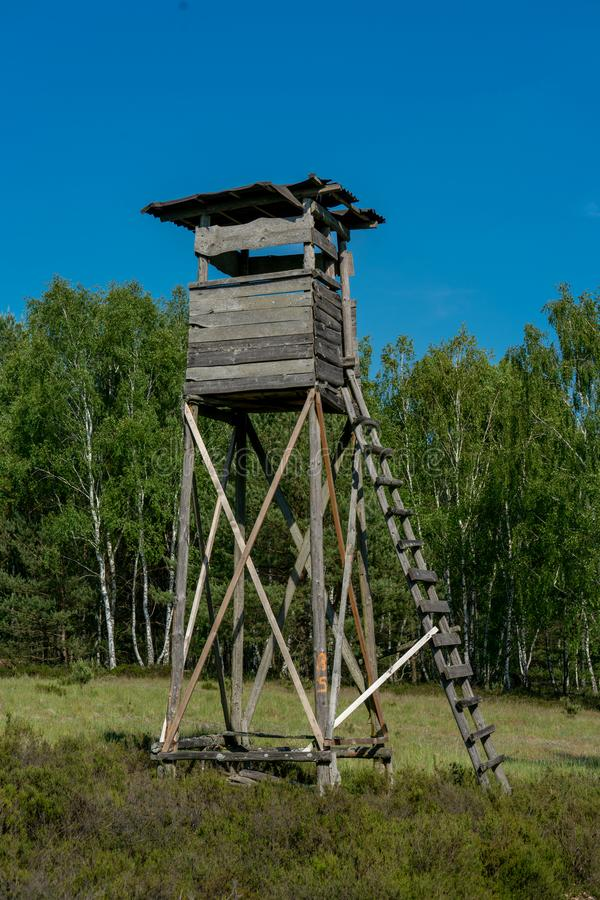 Wooden perch with cloudless blue sky stock photo