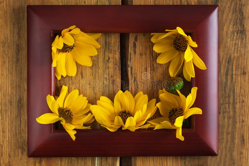 Wooden photo frame with yellow flowers on a brown wood background. Hello autumn concept royalty free stock photos