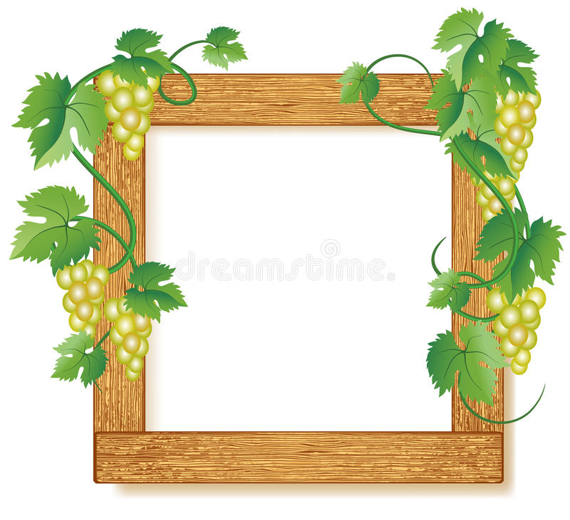 Wooden photo frames with grapes stock illustration