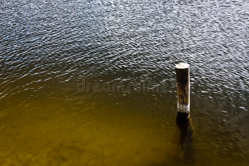 Wooden picket in lake royalty free stock photo