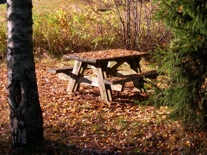 Download Wooden Picnic Table stock image. Image of outdoor, wooden - 1435065