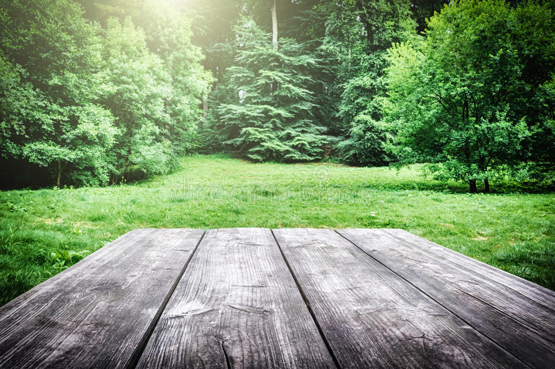 Wooden picnic table in forest stock images
