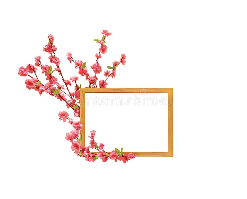Wooden Picture Frame with Cherry Blossom Decor on White Background, Clipping Path stock photography