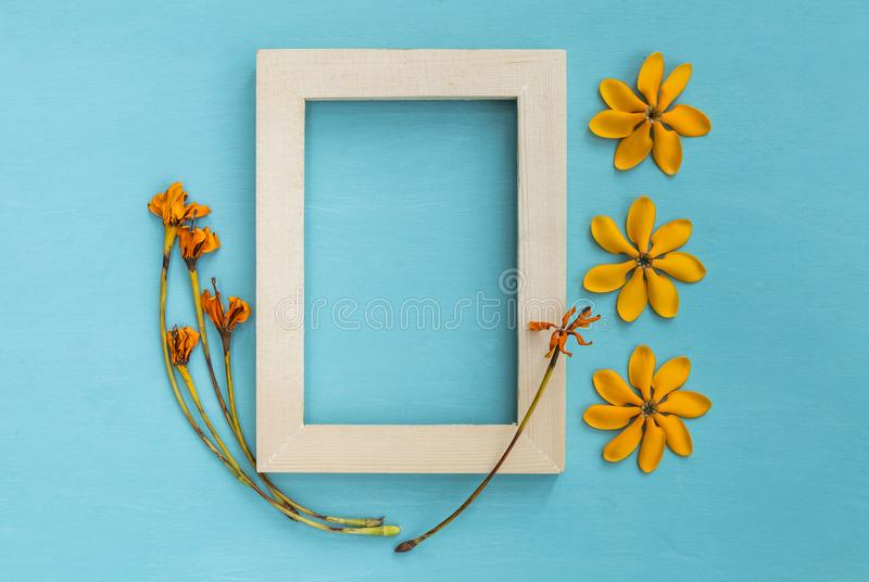 Wooden picture frame decorate with yellow flower. On blue background royalty free stock image