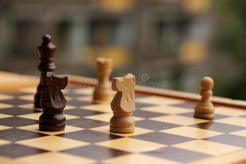 Wooden pieces, chess horses, white and dark brown on a chessboard, game concept stock photos