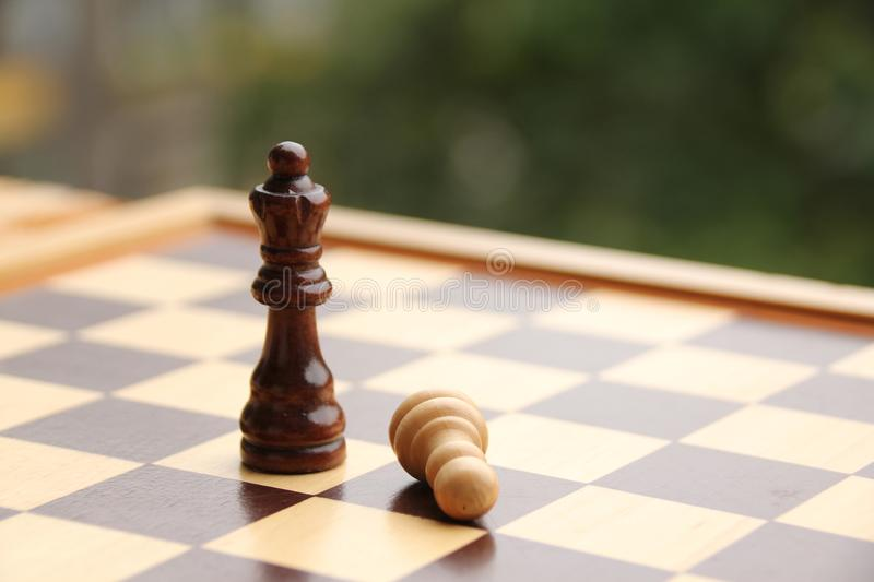 Wooden pieces, chess queen and pawn, white and dark brown on the chessboard, concept of the game, subordination, loss, dominance stock photography