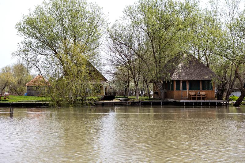 Wooden pier on the Danube River. Spring on Danube river. Flooded trees in the green meadow over the banks of the Danube river in early spring. Danube natural stock photography