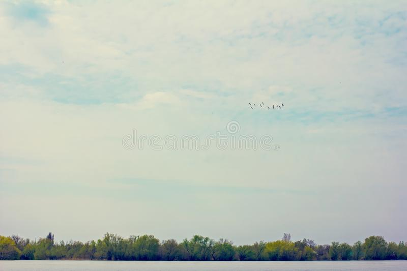 Wooden pier on the Danube River. Spring on Danube river. Flooded trees in the green meadow over the banks of the Danube river in early spring. Danube natural royalty free stock photography