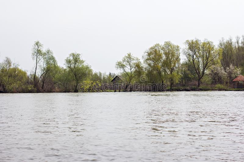 Wooden pier on the Danube River. Spring on Danube river. Flooded trees in the green meadow over the banks of the Danube river in early spring. Danube natural stock images