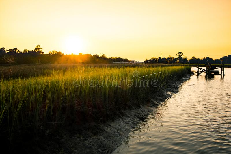 Wooden pier in south carolina low country marsh at sunset with green grass. Sunset on charleston low country with high green grass and river royalty free stock photo