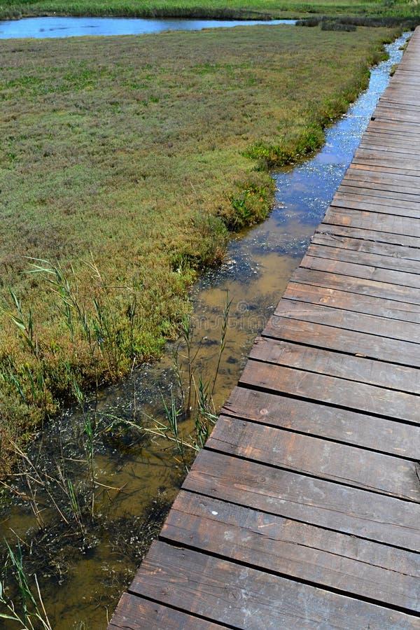 Wooden plank bridge across marshy land near healing muds and beaches of Nin, croatia, adriatic. Shot during summer season stock photo
