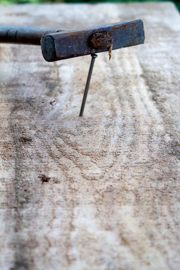 Wooden plank with nail and hammer in focus royalty free stock images