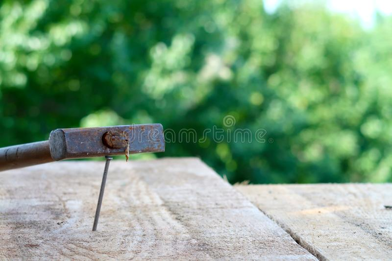 Wooden plank with nail and hammer in focus royalty free stock photo