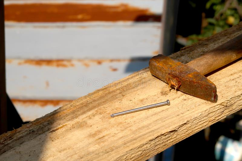 Wooden plank with nail and hammer in focus royalty free stock image