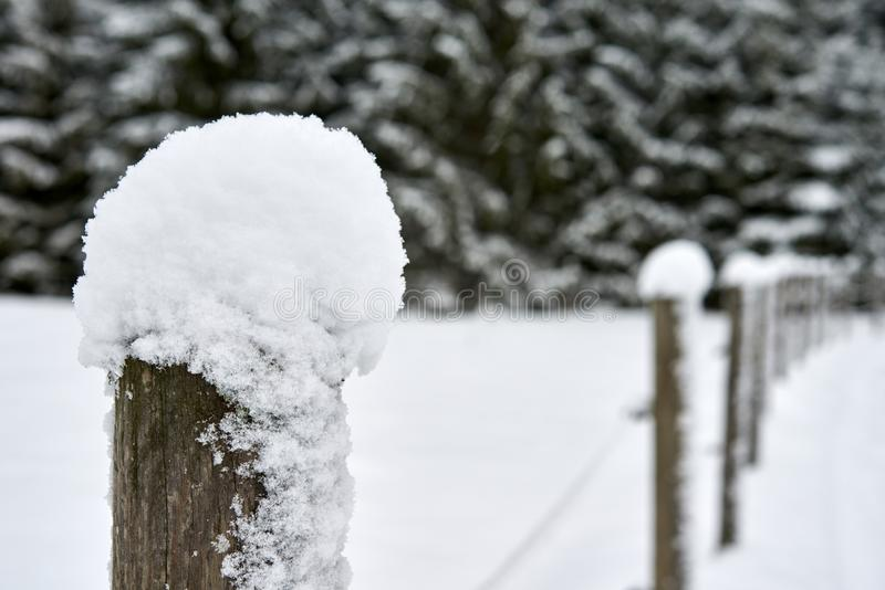 Wooden pole snow covered in snow stock photo