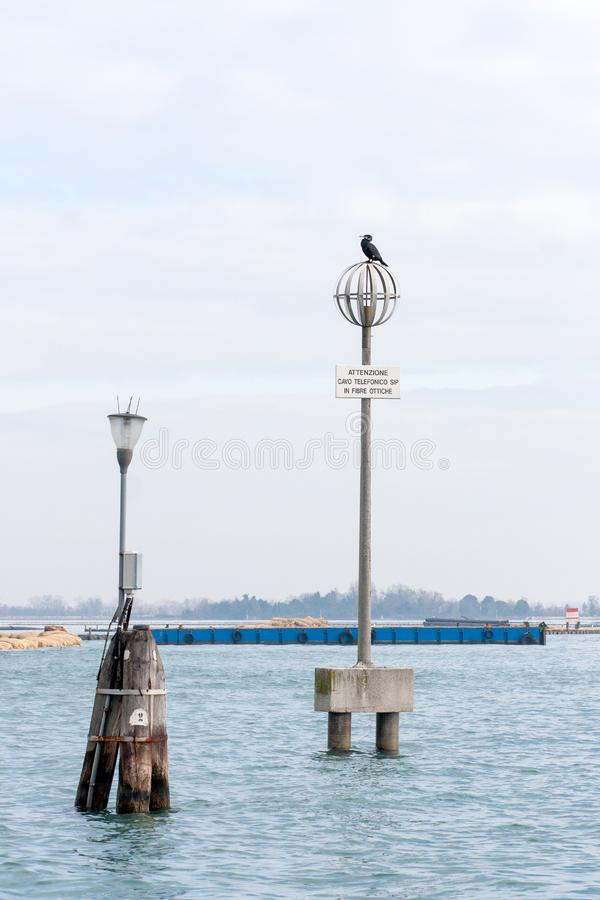 Electricity pole with a bird on top, in the Venice lagoon, Italy royalty free stock photo