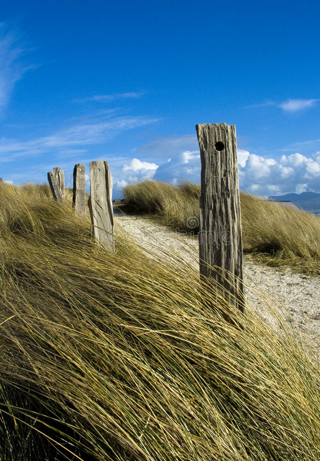 Wooden Posts royalty free stock photos