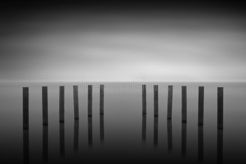 Wooden posts in a lake, long time exposure. Black and white stock photography