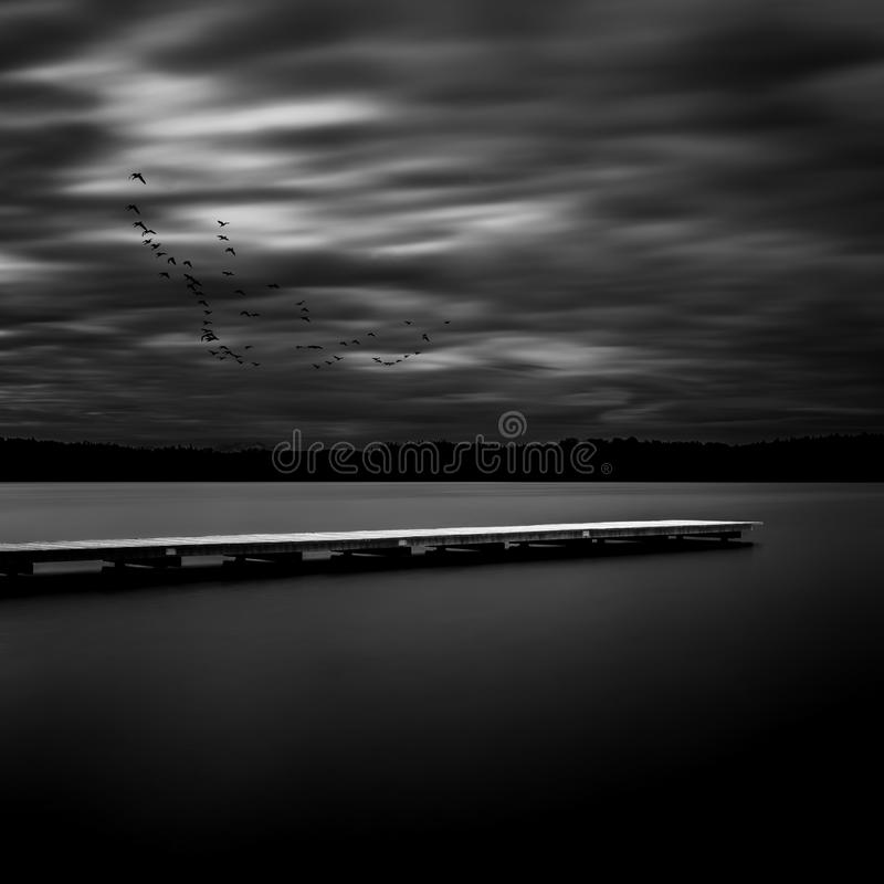 Wooden posts in a lake, long time exposure. Jetty on a lake in Bavaria, Germany, long time exposure in black and white royalty free stock photo