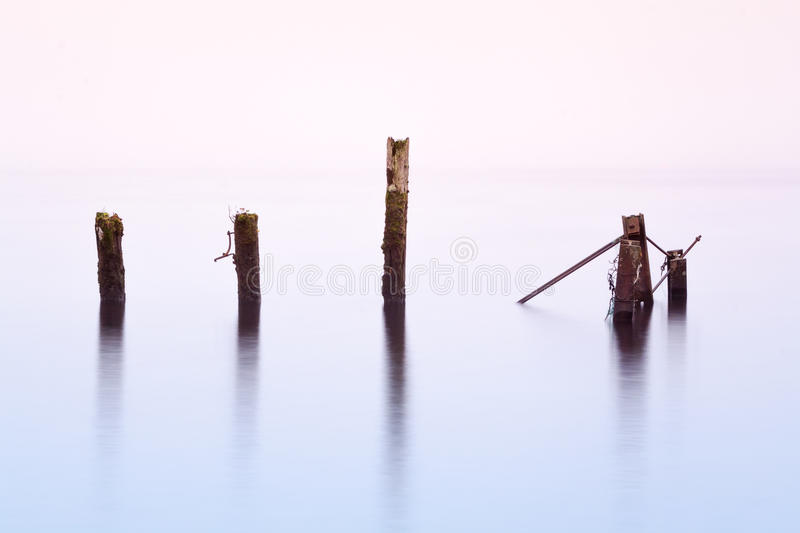 Wooden posts in lake stock photo