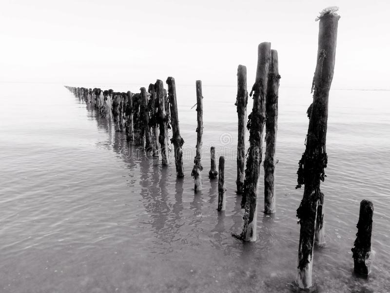 Wooden Posts in Sea stock photography