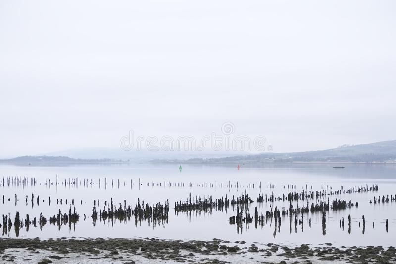 Wooden posts stakes in sea water sand for traditional shipbuilding industry timber ponds storage build vessels and fishing fisherm stock photo
