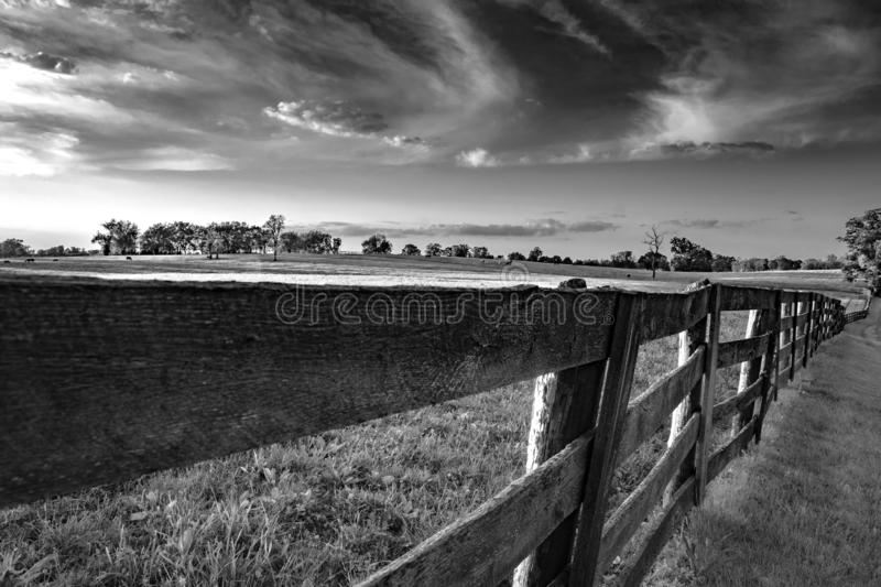 Wooden rail fence in Kentucky bluegrass region BW. Black and white image of a weathered wooden rail fence seen at vanishing perspective in a lush bluegrass horse royalty free stock photo