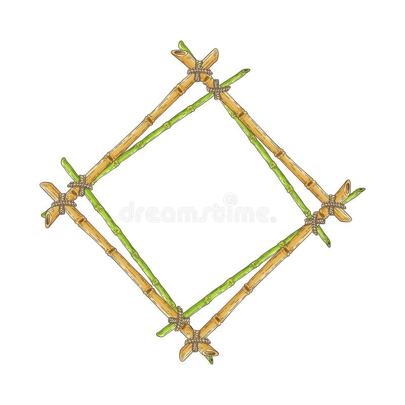 Wooden rhombic double frame from bamboo sticks sketch style. Vector illustration isolated on white background. Rhomb-shaped border template from natural vector illustration