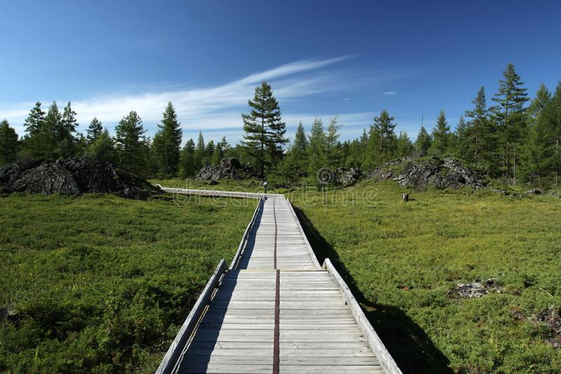 A Wooden Road Royalty Free Stock Images