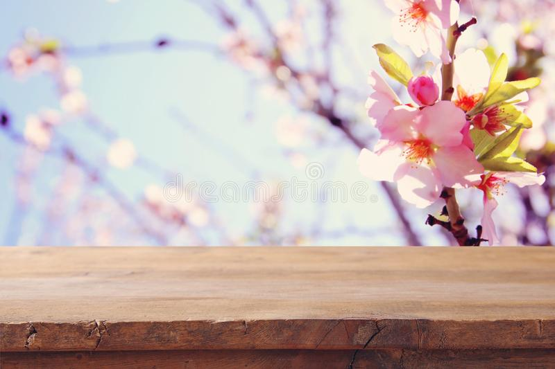 Wooden rustic table in front of spring cherry blossoms tree. product display and picnic concept. Wooden rustic table in front of spring cherry blossoms tree stock images