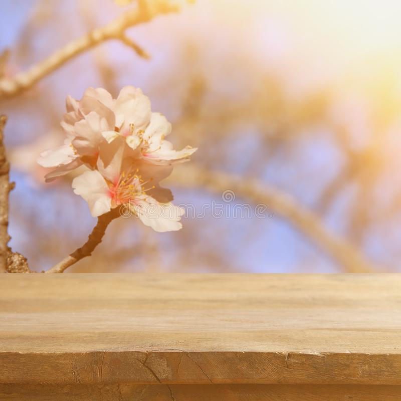 Wooden rustic table in front of spring cherry blossoms tree. vintage filtered image. product display and picnic concept. Wooden rustic table in front of spring stock images