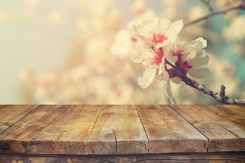 Wooden rustic table in front of spring white cherry blossoms tree. vintage filtered image. product display and picnic concept.  stock photography