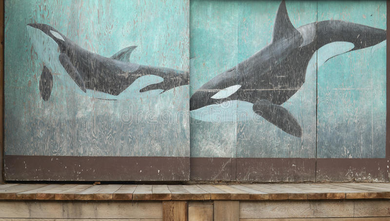 Wooden rusty warehouse doors with orcas painting in Vancouver. Canada royalty free stock images