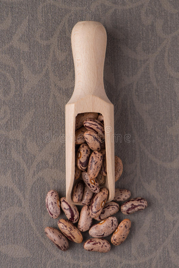 Wooden scoop with pinto beans. Top view of wooden scoop with pinto beans against brown vinyl background stock image