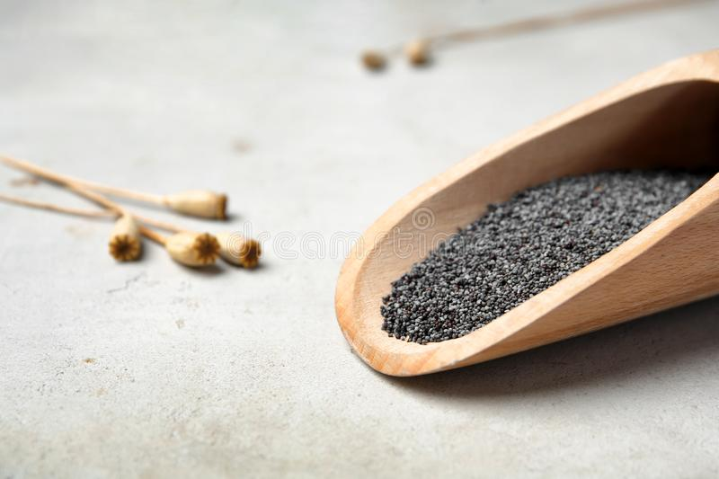 Wooden scoop with poppy seed stock photos