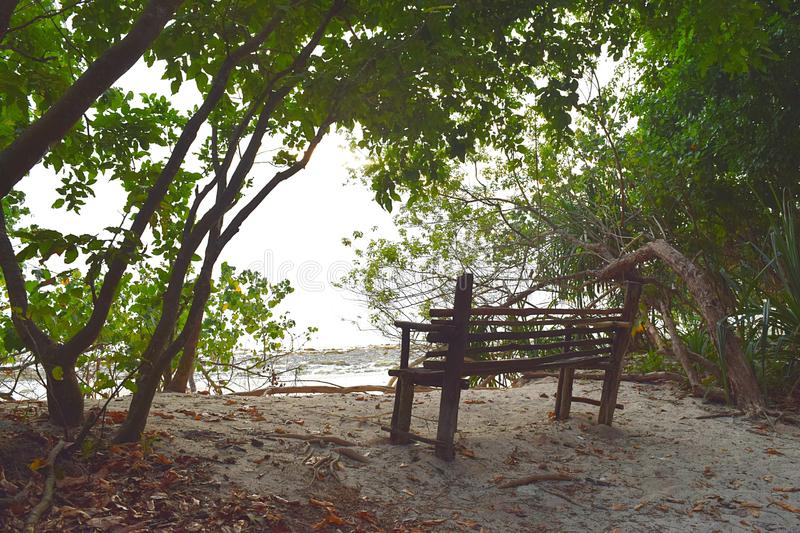 A Wooden Seat in Shade of Green Trees in Littoral Forest on White Sandy Beach - Peace and Relaxation stock photo