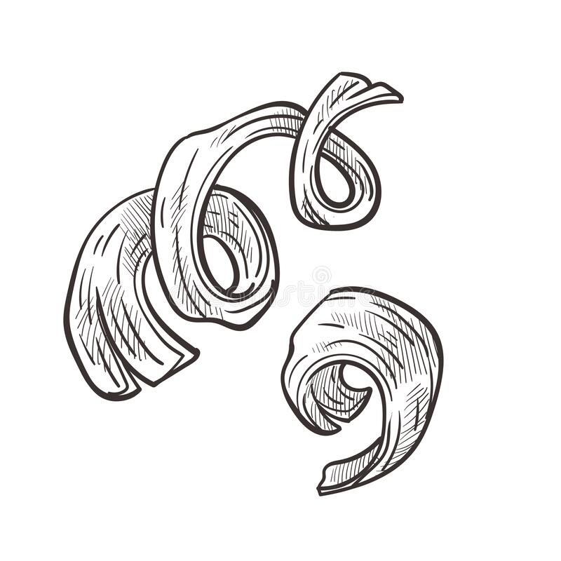 Free Wooden Shavings And Curly Wood Chips Hand Drawn Illustration Stock Photo - 173120270