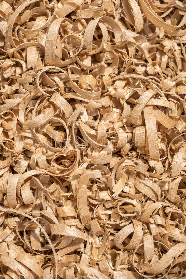 Wooden shavings. Close up view of planar wooden shavings stock image