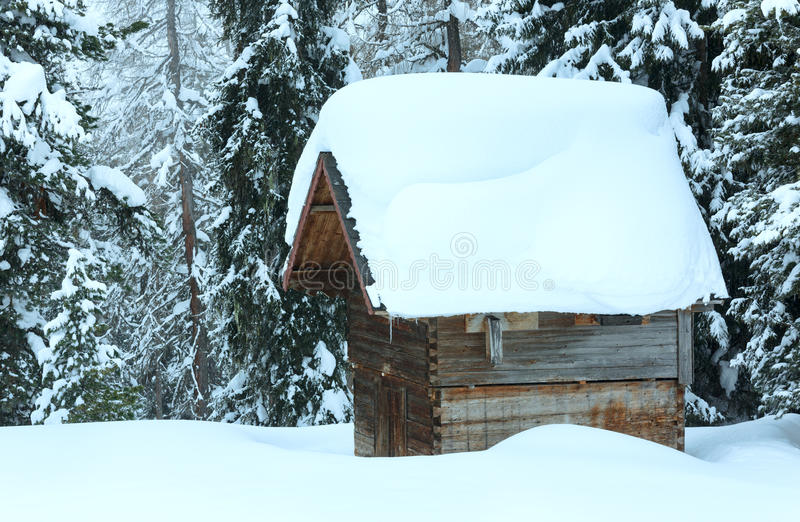 Download Wooden Shed In Winter Fir Forest Stock Photo - Image: 35141370