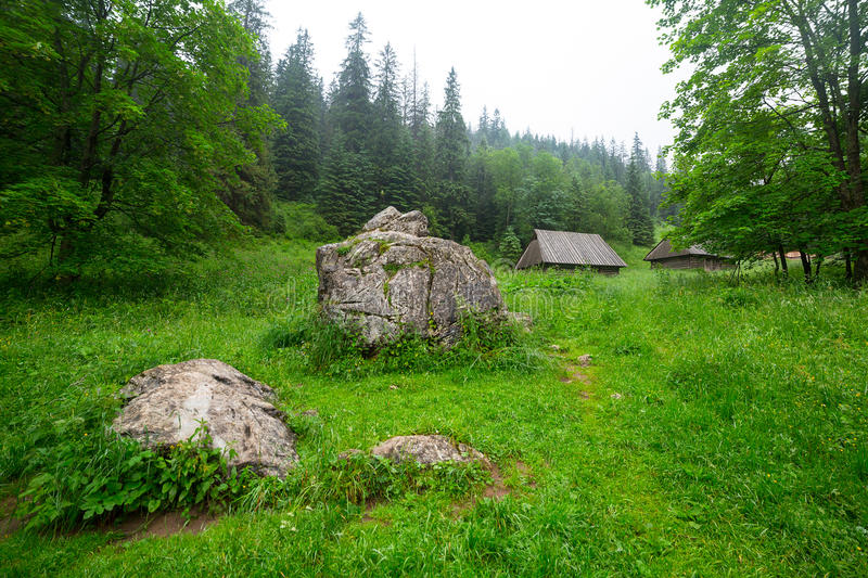 Download Wooden Shelter In The Forest Of Tatra Mountains Stock Image - Image: 32398973