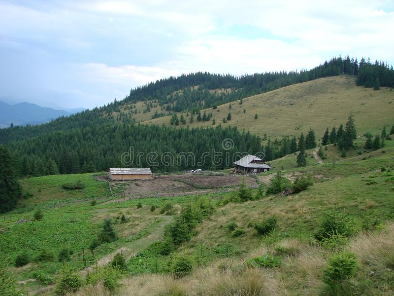 Wooden shepherd house in a mountains. Traditional small hut in Carpathian mountains on green meadow called Polonyna or montane royalty free stock photo