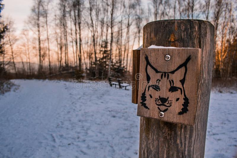 Wooden sign of lynx in winter landscape, walking trail sign leading to lynx sanctuary in Harz Mountains, Germany stock images