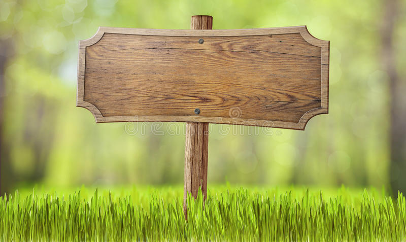 Wooden sign in summer forest grass royalty free stock photography
